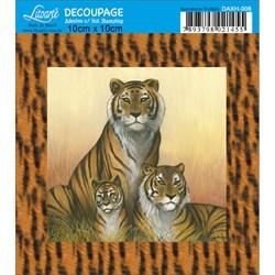 Adesivo Quadrado com Hot Stamping DAXH-008 Tigre