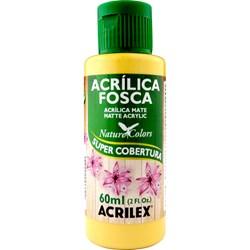 Tinta Acrílica Fosca - Nature Colors Acrilex 60mL - 525 Camurça