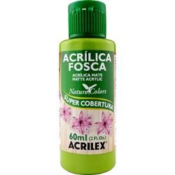 Tinta Acrílica Fosca - Nature Colors Acrilex 60mL - 570 Verde Pistache
