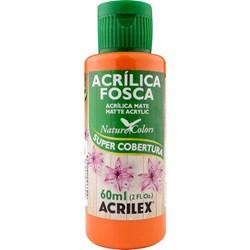 Tinta Acrílica Fosca - Nature Colors Acrilex 60mL - 576 Cenoura