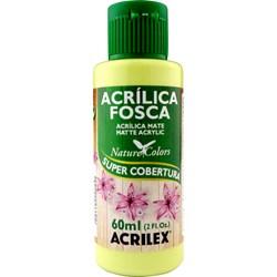 Tinta Acrílica Fosca - Nature Colors Acrilex 60mL - 898 Verde Alecrim