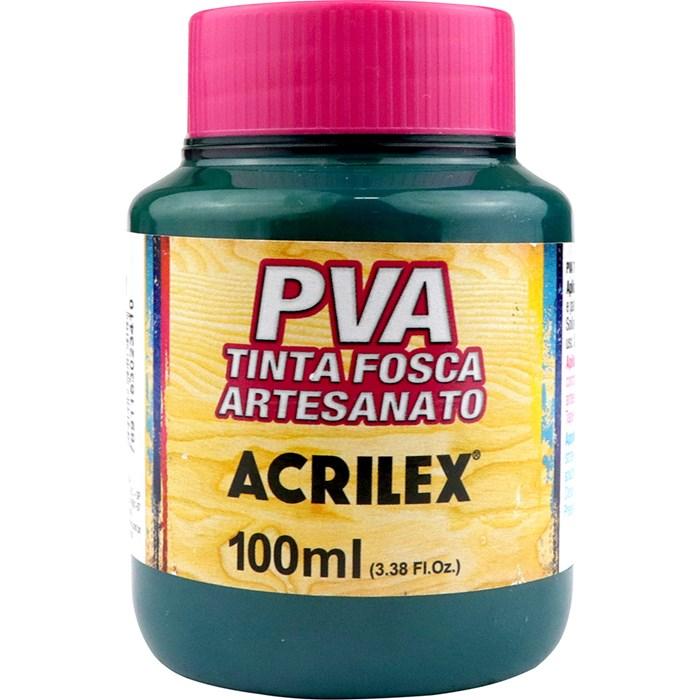 Tinta PVA Fosca para Artesanato Acrilex 100mL - 511 Verde Bandeira