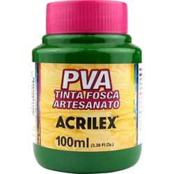 Tinta PVA Fosca para Artesanato Acrilex 100mL - 513 Verde Musgo