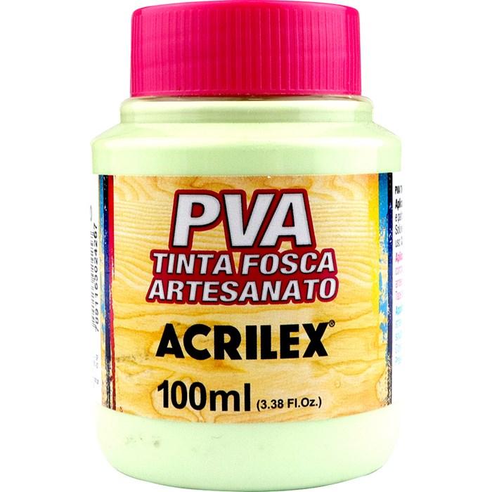 Tinta PVA Fosca para Artesanato Acrilex 100mL Verde Primavera