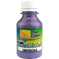 Tinta PVA Fosca para Artesanato True Colors 100mL - 7216 Crepúsculo